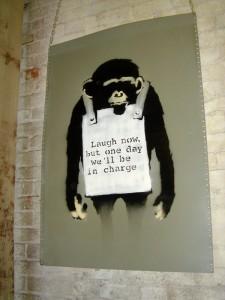 monkey-inspiration